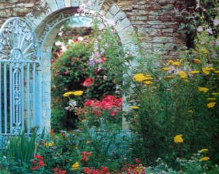 lối vào vườn