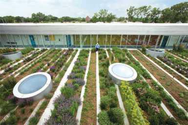 Mô hình nông nghiệp đô thị trên sân thượng của một tòa nhà. (Ảnh: TechNewsWorld)