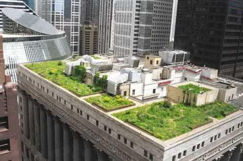 òa thị chính Chicago, USA