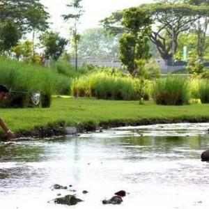 Một góc công viên Bishan, Singapore