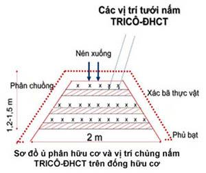 use tricho