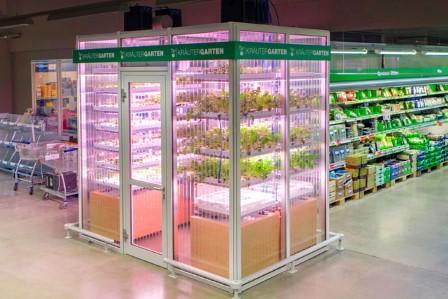 Hình ảnh Kräutergarten tại một siêu thị tại Đức