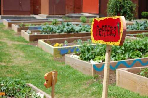 """Một gợi ý cho những ai muốn trồng theo phong cách """"mỗi thứ một ít"""". Chỉ với một vài khuôn gỗ nhỏ xinh là bạn đã có thể khoanh vùng các loài cây xanh muốn trồng rồi."""