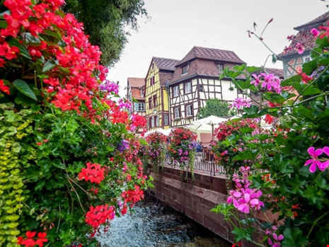 """Colmar được ưu ái với tên gọi """"tiểu Venice"""" trong lòng nước Pháp."""