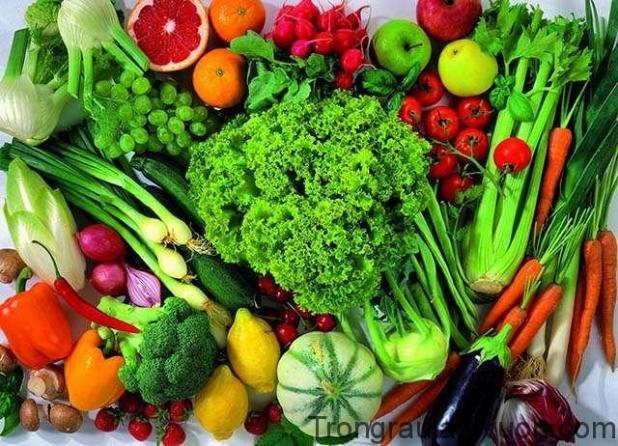 Nên có chế độ ăn khoa học cân đối dinh dưỡng, ăn nhiều rau xanh và hoa quả tươi.