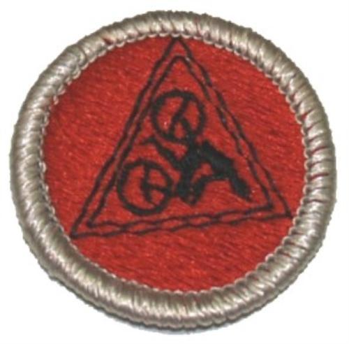 Public Advancement Boy Scout Troop 21 Zeeland Michigan