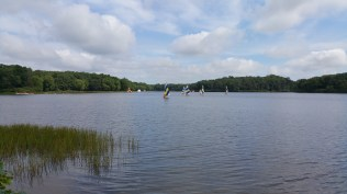 Sailboats From Camp