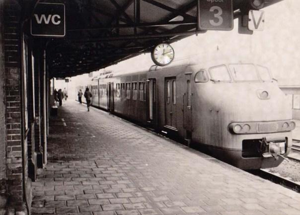 foto hondekop trein