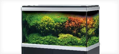 move-akvarium tropehagen.no
