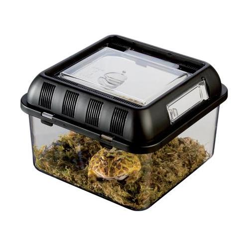 Plast terrarie breeding box