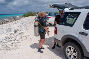 Tropical Car rental Bonaire -diving SUV-1