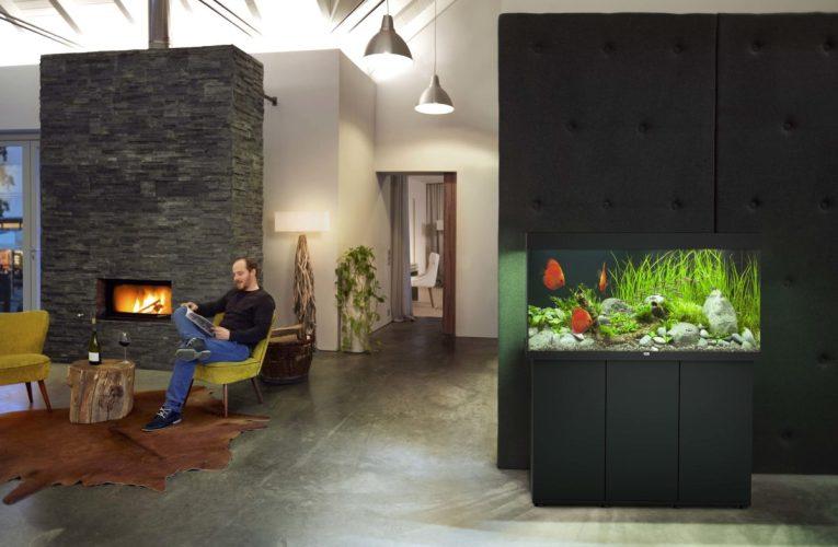 Jak wybrać najlepsze miejsce dla akwarium?