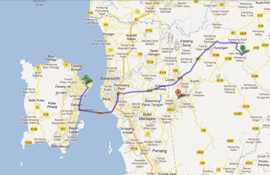 forest canopy diagram 2016 nissan altima wiring a nice daytrip from penang – kulim walk and bird park | tropical expat