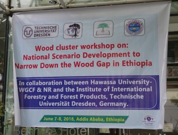 We strive to provide all our customers with quality products and prompt service at a competitive price. National Scenario Development To Narrow Down The Wood Supply Gap In Ethiopia Tu Dresden Tropical Forestry Blog