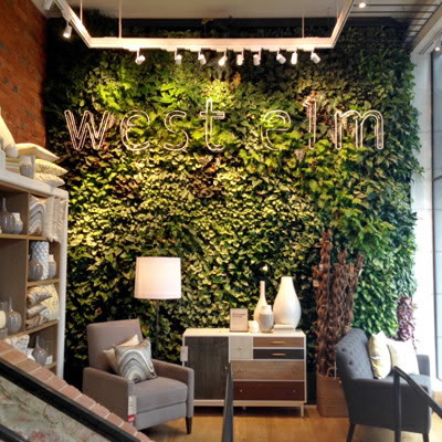 Green Walls Vertical Plant Gardens Plantscaping Clean Air