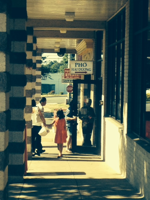 Eden Center Shoppers, July 2014