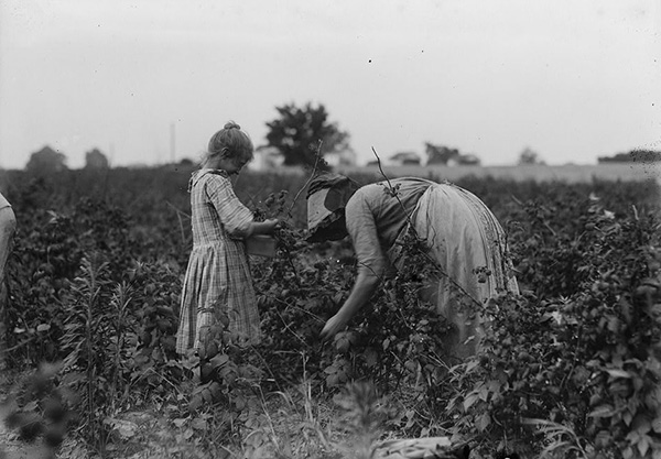 Subsistence homesteading was not considered a relief project and excluded Dust Bowl migrants. Photo courtesy of UFCW 324