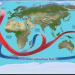 Laboratory Activity: Heat Transport and Ocean Circulation