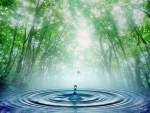 Lesson Plan: The Water Cycle in a Sustainable World