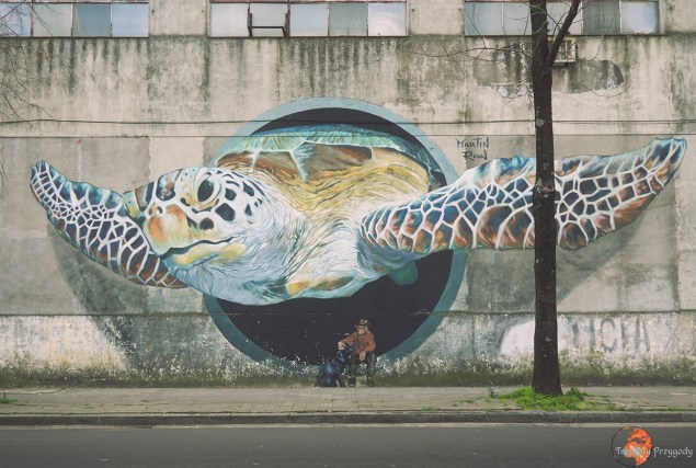 street art w Buenos Aires