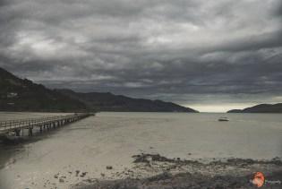 Lyttelton Harbour, okolice Christchurch, fot. K. Wudniak