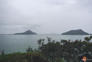 Droga z Brisbane do Sydney - road trip po Australii