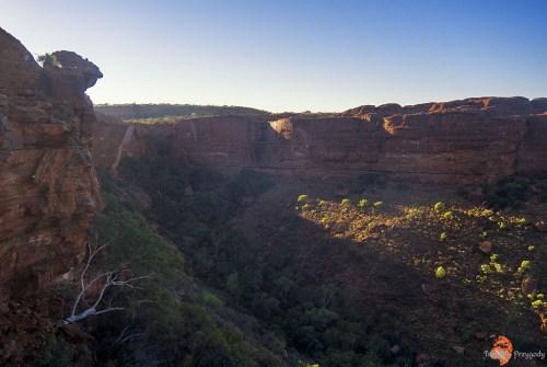 Kings Canyon zwiedzanie