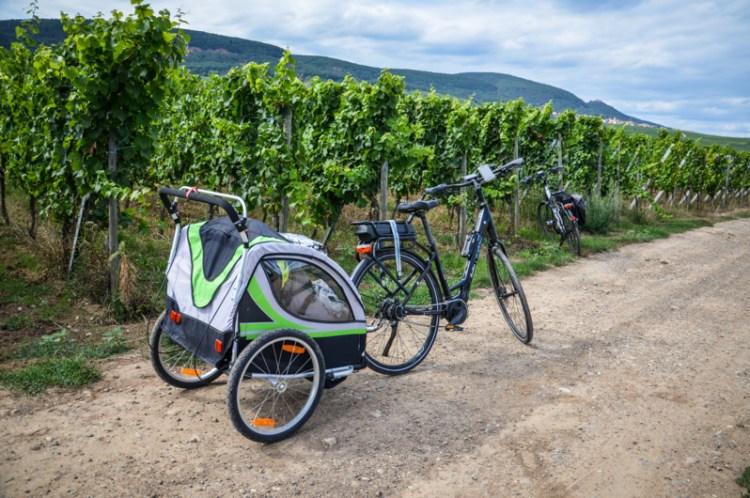 alsace eguisheim village blog voyage vélo vigne