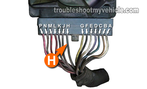Part 2 Gm 38l Ignition Control Module And Crank 3x 18x Sensor