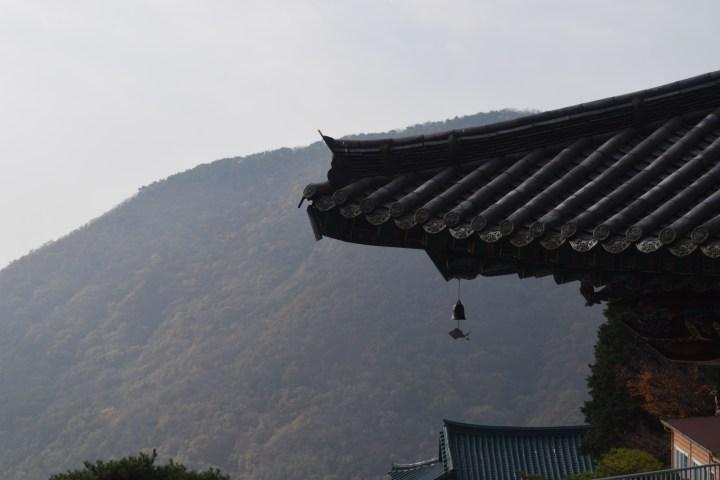 mountain 043