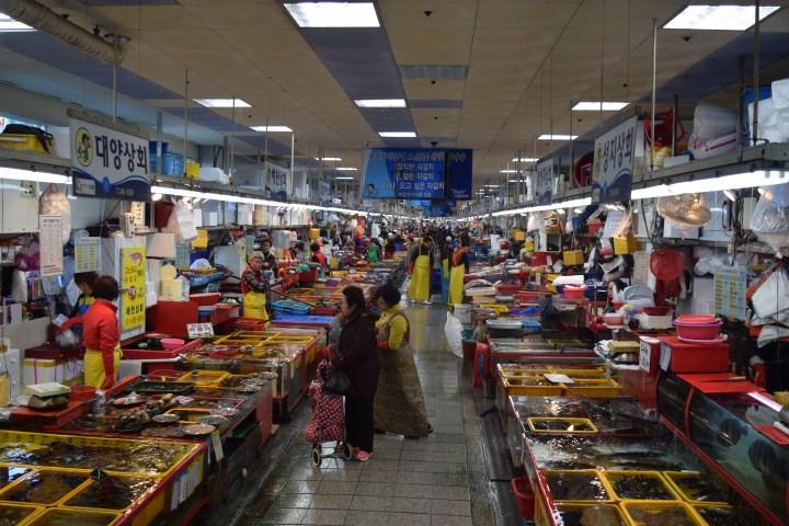 Busan fish market 001