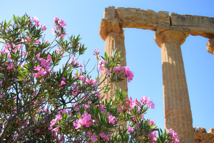 4 Days Week-End West Sicily 010