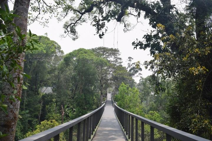 Penang-hill26
