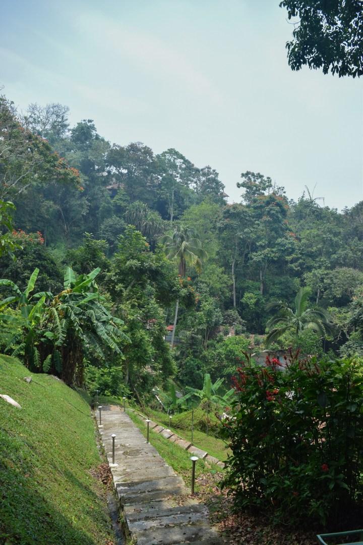Penang-hill5