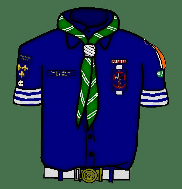 Nos insignes
