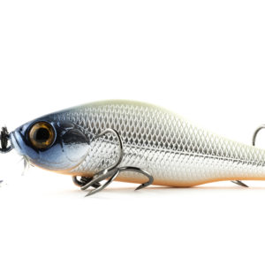 Zipbaits Khamsin Jr. SR 821R