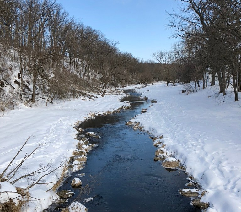 Winter trout stream in the Driftless
