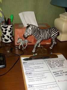 Plastic Zebras