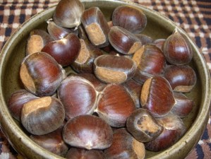 Chestnuts from Lyle and Tami's Tree