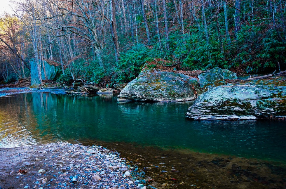 Trout Streams NC Fly Fishing Fishing Trout Trout