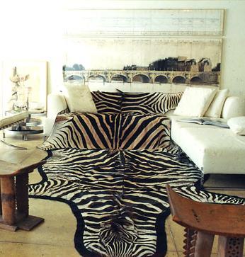 zebra rug Domino