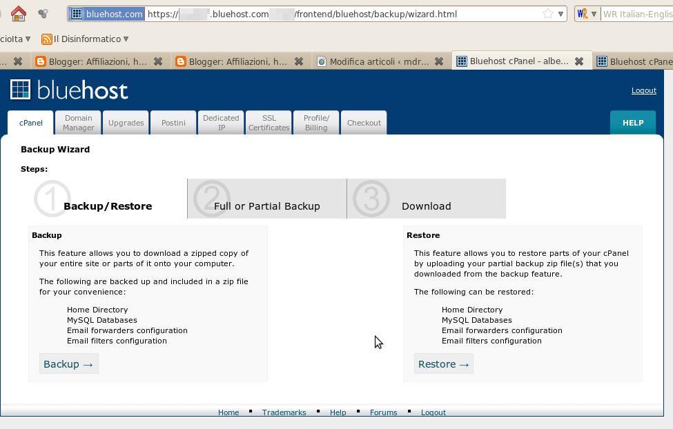 Hosting Bluehost: funzionalità di backup programmato dei tuoi dati