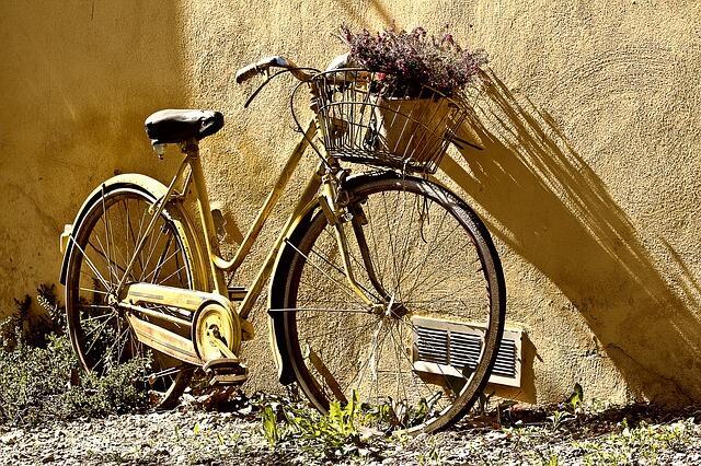 Registrazione domini con estensione: .bike (Guide, Mondo Domini)