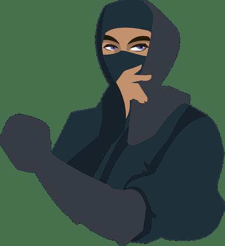 Domini .ninja: come e dove registrarne uno (Guide, Mondo Domini)