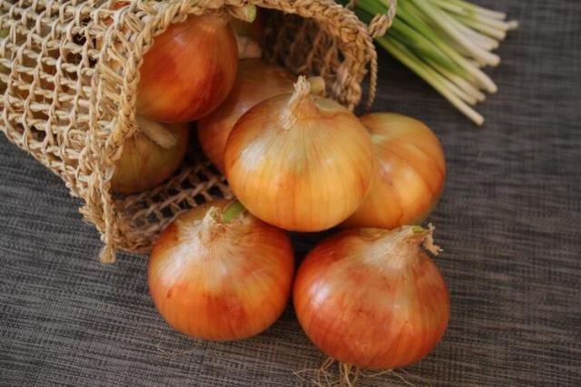 Domini .onion: cosa sono, e come registarne uno (Guide)