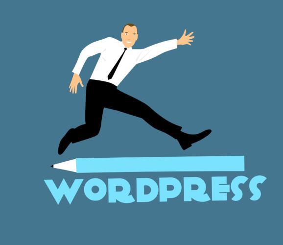 Temi WordPress: come usarli in modo corretto (Guide, Guide per la configurazione di WordPress)