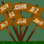 Si possono registrare domini per più di 10 anni?