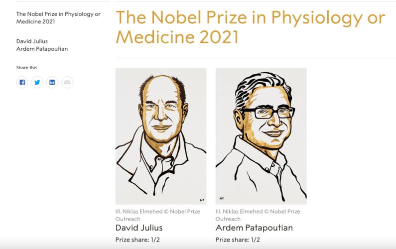 Nobel per la medicina a Julius e Patapoutian: alla scoperta della scienza dei sensi