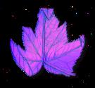 colorizedshadow