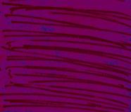 pink lines megan